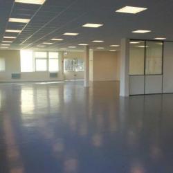 Location Local d'activités Bièvres 426 m²