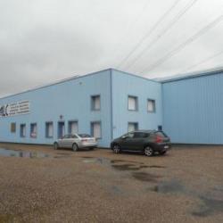 Location Local d'activités Sainte-Marie-aux-Chênes 1062 m²