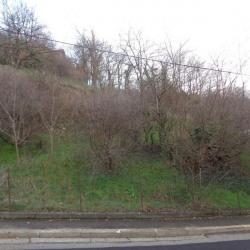 Vente Terrain Rillieux-la-Pape 536 m²