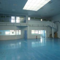 Vente Local d'activités Savigny-le-Temple 370 m²