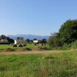 Terrain  de 802 m²  Lannemezan  (65300)