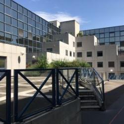 Vente Bureau Caluire-et-Cuire 197 m²