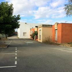 Vente Local d'activités Portet-sur-Garonne 1160 m²