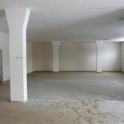 Location Entrepôt Malaunay 220 m²
