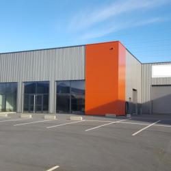 Location Local d'activités Melesse 500 m²