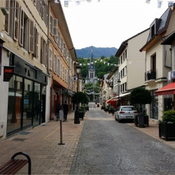 Vente Local commercial Albertville 340 m²