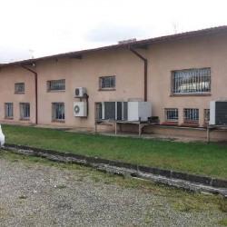 Vente Local d'activités Aussonne 956 m²
