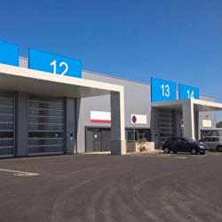 Location Local d'activités Escalquens 2278 m²
