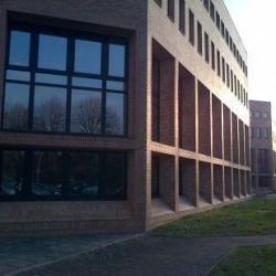 Location Local d'activités Le Pecq 1222 m²