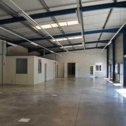 Location Local d'activités Montpellier 495 m²