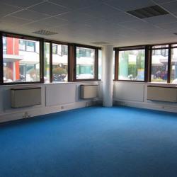 Vente Bureau Toulouse 301 m²