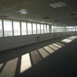 Location Bureau Rennes 315 m²