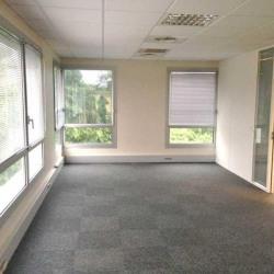 Location Bureau Wasquehal 651 m²