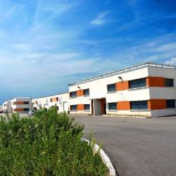 Location Local d'activités Meyzieu 4785 m²