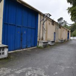 Location Entrepôt La Trinité 2200 m²