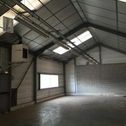 Location Local d'activités Offranville 440 m²