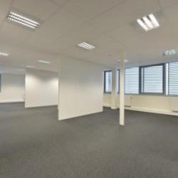 Vente Bureau La Roche-sur-Yon 1605 m²