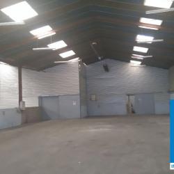 Location Local d'activités Aucamville 1200 m²