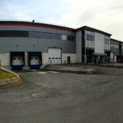 Location Local d'activités Mitry-Mory 1052 m²