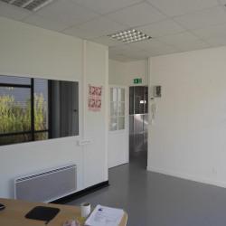 Location Local d'activités Croissy-sur-Seine 320 m²