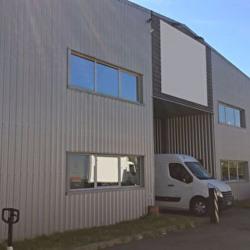 Location Local d'activités Saint-Jean 1650 m²