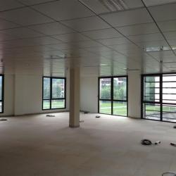 Location Bureau Lyon 4ème 546 m²