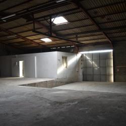 Location Local d'activités Toussieu 400 m²