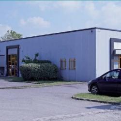 Location Local d'activités Toulouse 100 m²