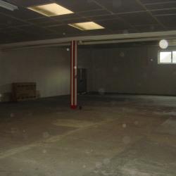 Location Local d'activités Angers 950 m²