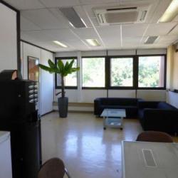 Location Bureau Les Pennes-Mirabeau 220 m²