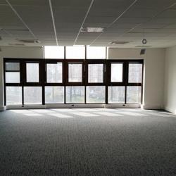 Location Bureau Ivry-sur-Seine 328 m²
