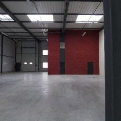 Location Local d'activités Oullins 1686 m²