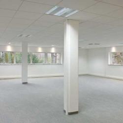 Location Bureau Sophia Antipolis 970,2 m²