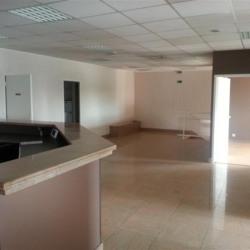 Location Bureau Brie-Comte-Robert 250 m²