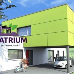 Maison  5 pièces + Terrain  300 m² Nancy (54000)