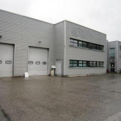 Location Local d'activités Souffelweyersheim 146 m²