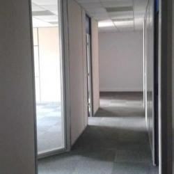 Location Bureau Montigny-le-Bretonneux 960 m²