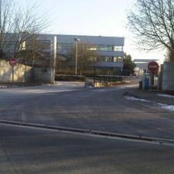 Location Entrepôt Bussy-Saint-Georges (77600)