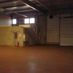 Vente Local d'activités Noisiel 607,66 m²