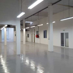 Location Local d'activités Colombes 894 m²