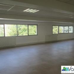 Location Bureau Neuilly-sur-Marne 115 m²