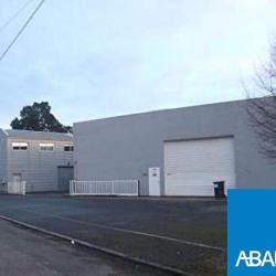 Location Entrepôt Villenave-d'Ornon 240 m²