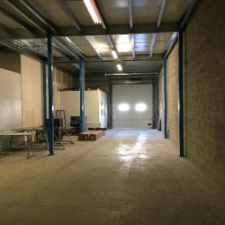 Vente Local d'activités Serris 480 m²