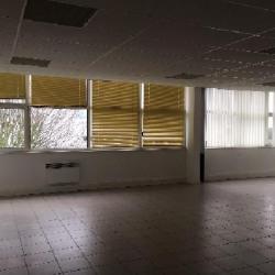 Location Local d'activités Gonesse 476 m²