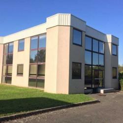 Vente Bureau Linas 1000 m²