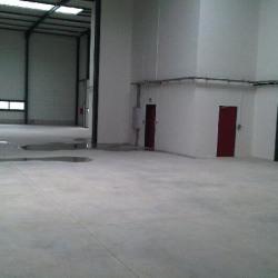 Location Local d'activités Meaux 373 m²