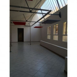 Location Local commercial Vienne 332 m²