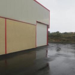 Location Local d'activités Saint-Georges-d'Orques 600 m²