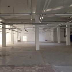 Vente Local d'activités Villepinte 3007 m²