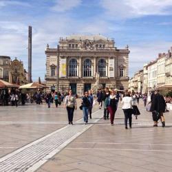 Cession de bail Local commercial Montpellier 60 m²